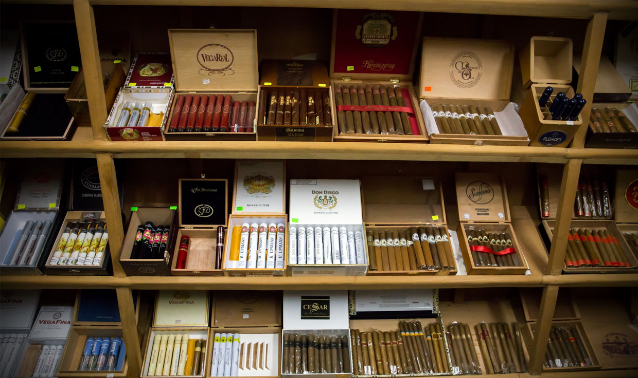 Cigars on Display in Cigar Shop