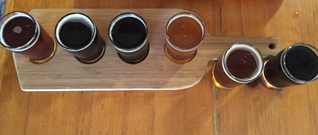 Dunedin Brewery Beer Sampler