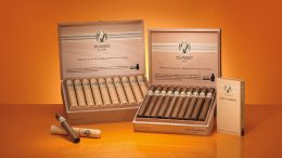 Avo Classic cigar boxes and cigars